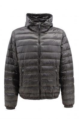 NAVIGARE  jakna - N6 67013/Z17 - MASLINASTA