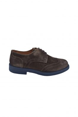 BARBOLINI cipele - B0zCAM02 - BRAON